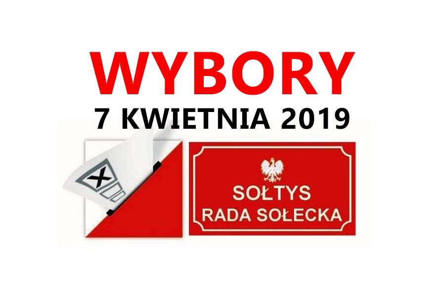 wybory_soltysi_2019